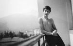 Berkovica, 1981